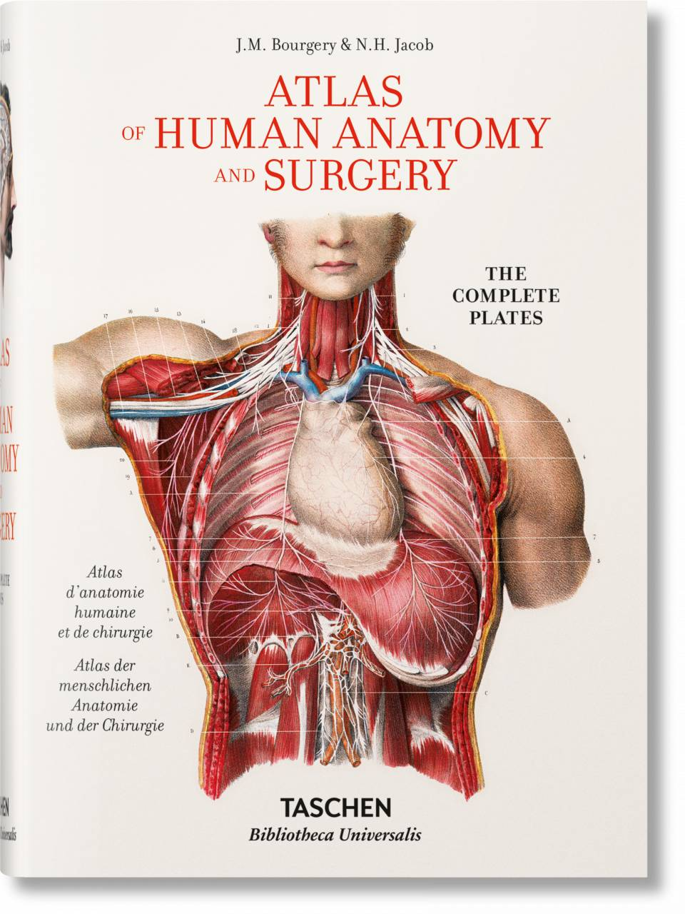 Bourgery. Atlas of Human Anatomy and Surgery - image 1
