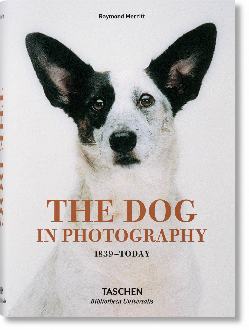 The Dog in Photography 1839–Today - image 1