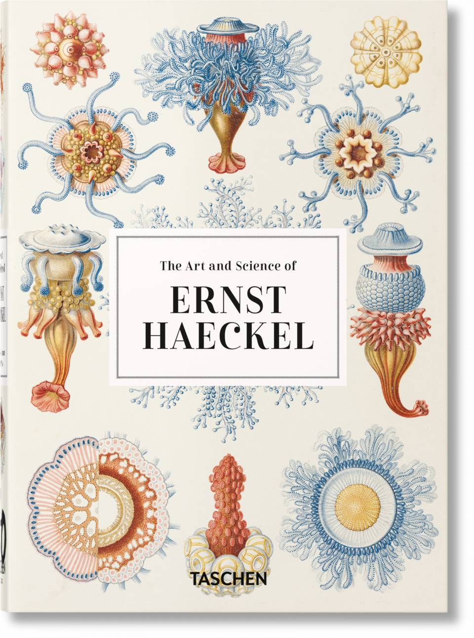 The Art and Science of Ernst Haeckel. 40th Ed. - image 1