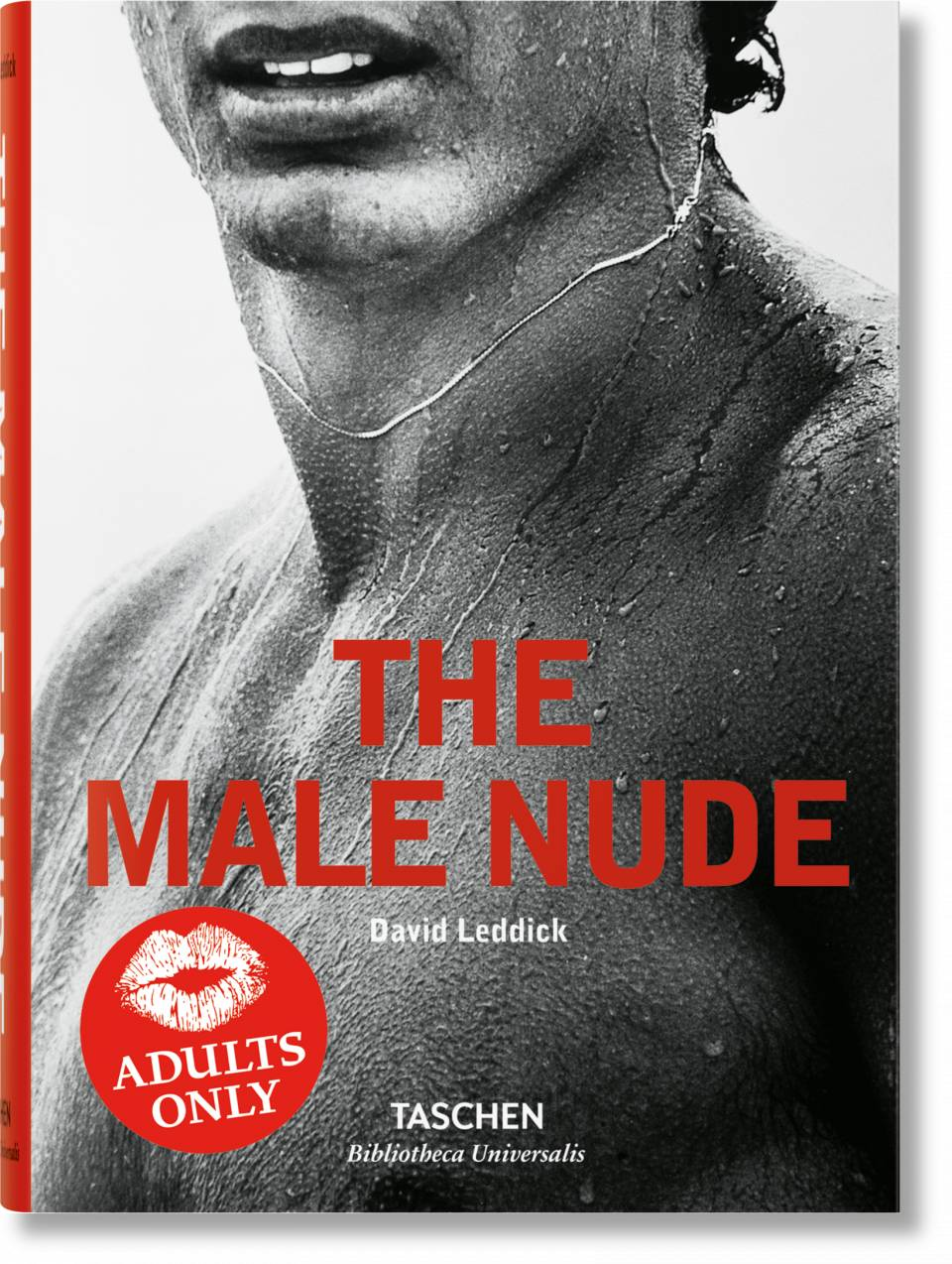 The Male Nude - image 1