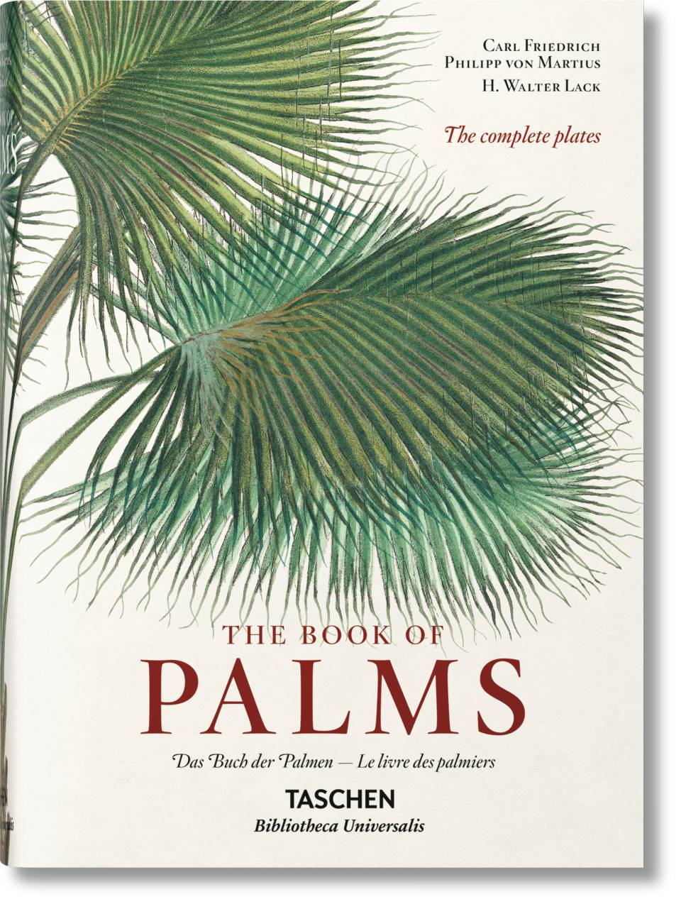 Martius. The Book of Palms - image 1