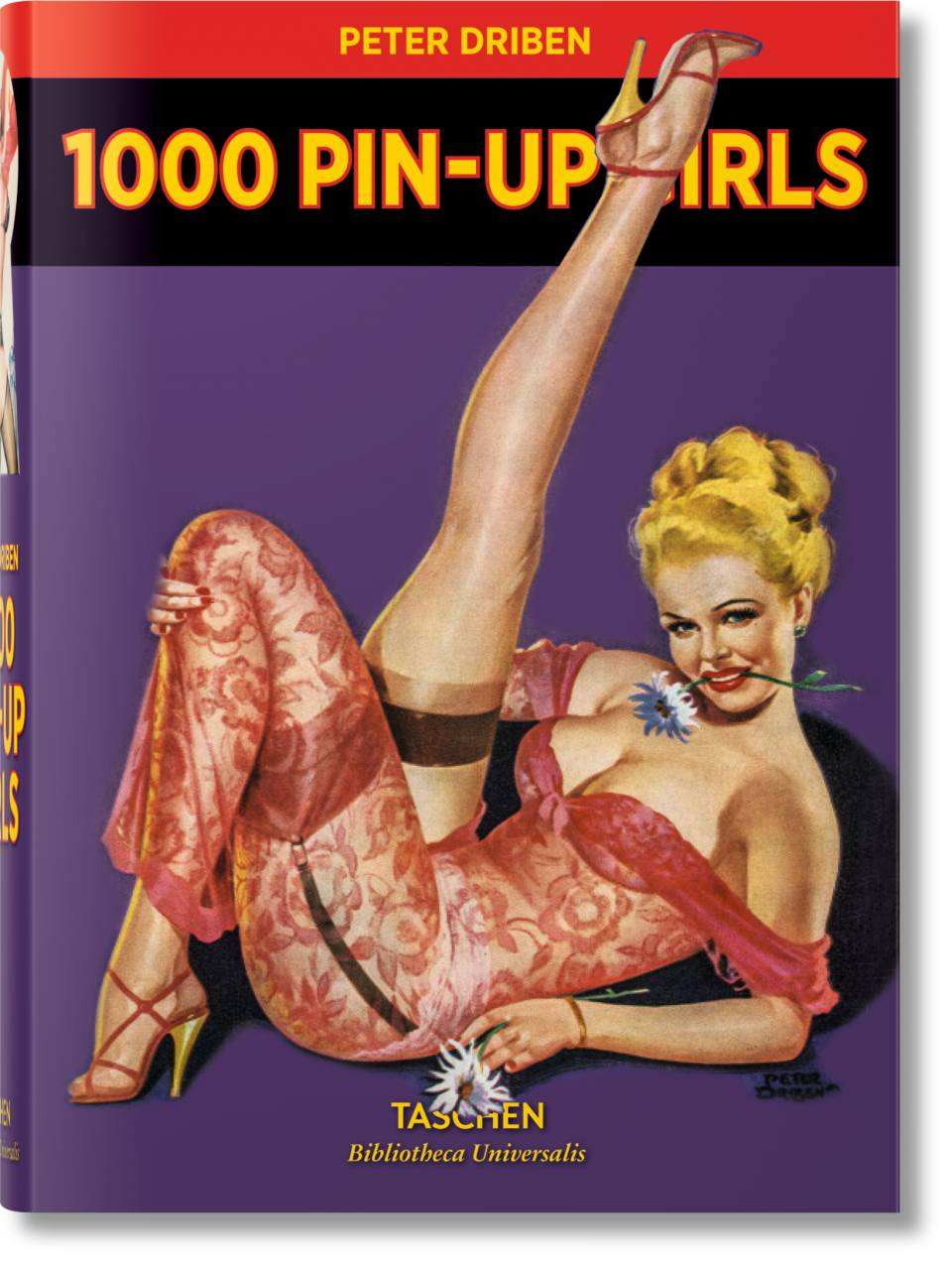 1000 Pin-Up Girls - image 1