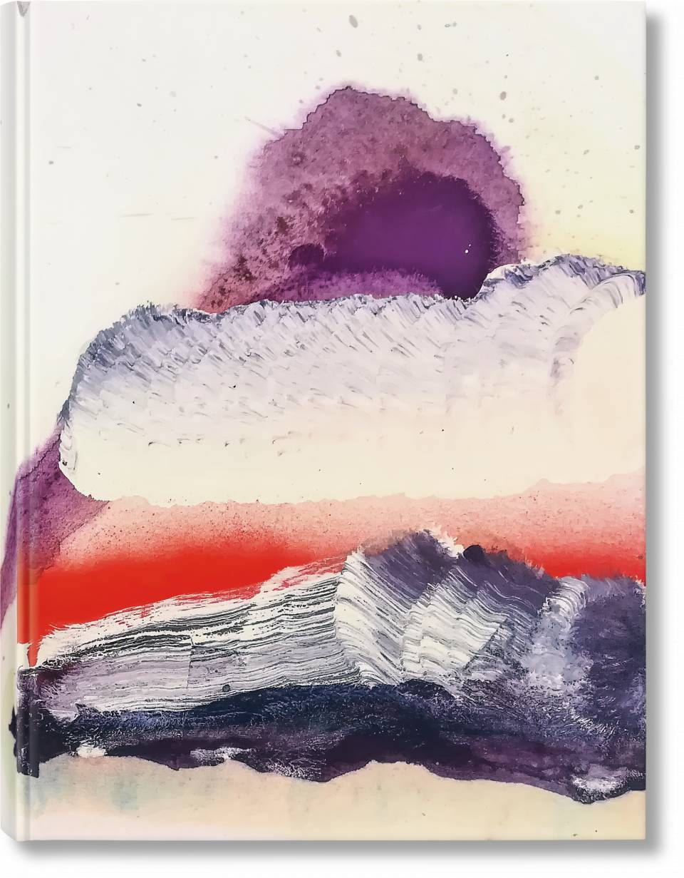 Julian Schnabel. Art Edition No. 1–35 'Overpainted cover' - image 1