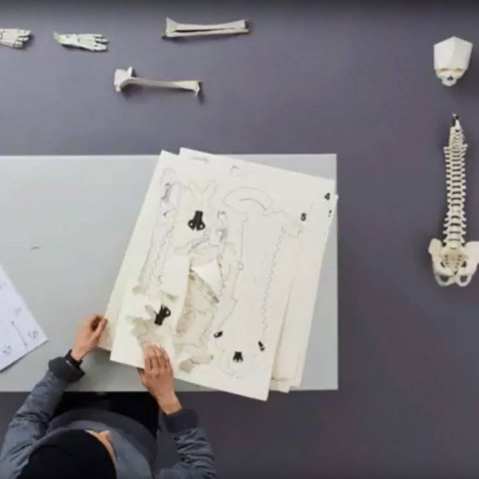 How to Build Your Own Skeleton