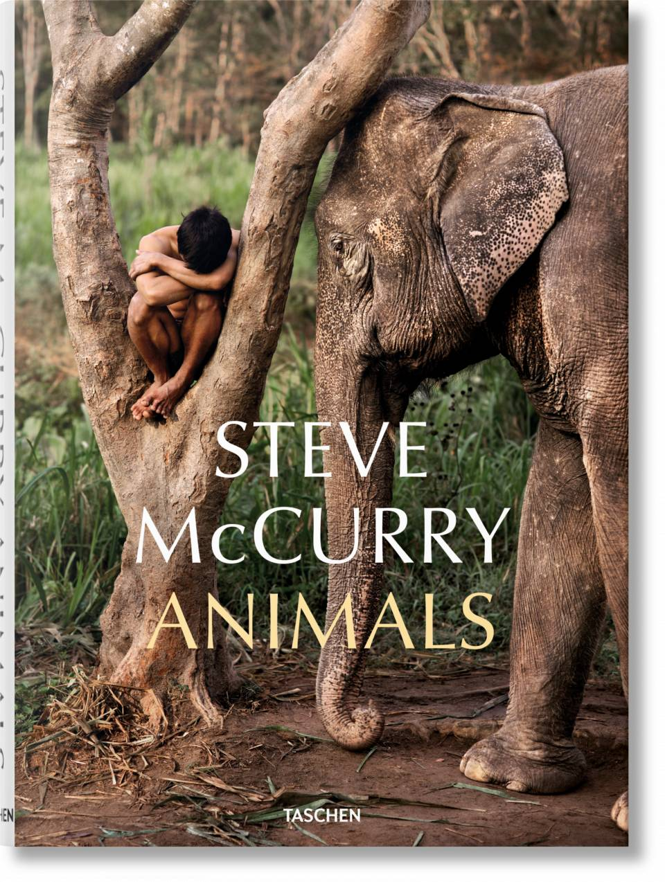 Steve McCurry. Animals - image 1