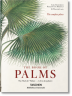 Martius. The Book of Palms (Bibliotheca Universalis)