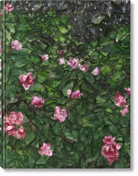 Julian Schnabel (Limited Edition)