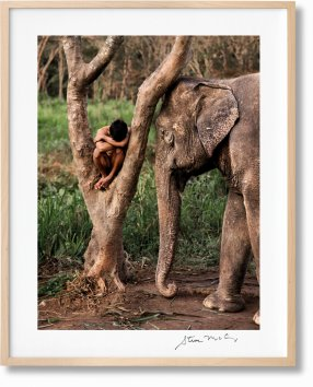 Steve McCurry. Animals. Art Edition No. 1–100 'Chiang Mai, Thailand, 2010' (Limited Edition)