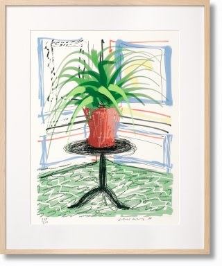 David Hockney. A Bigger Book. Art Edition No. 501–750 'Untitled, 468' (Limited Edition)