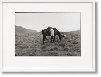 Linda McCartney. Life in Photographs, Art Edition No. 1–125 'Horse' (Limited Edition)