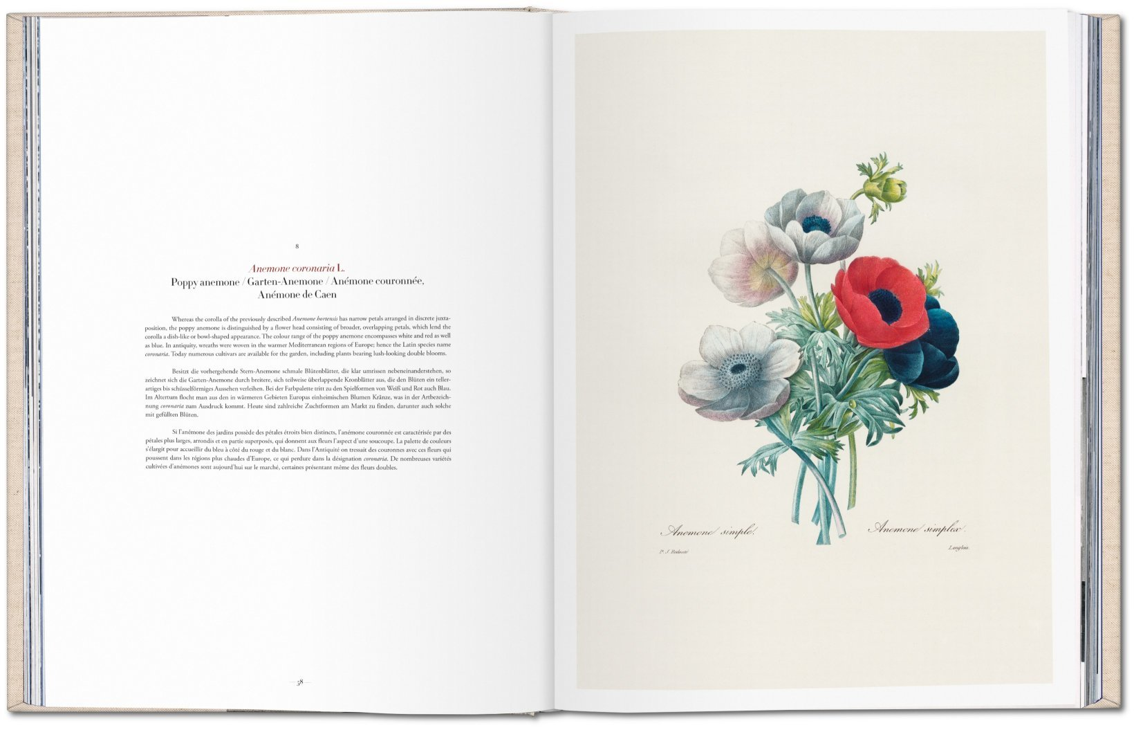 Redout Selection Of The Most Beautiful Flowers Taschen Books