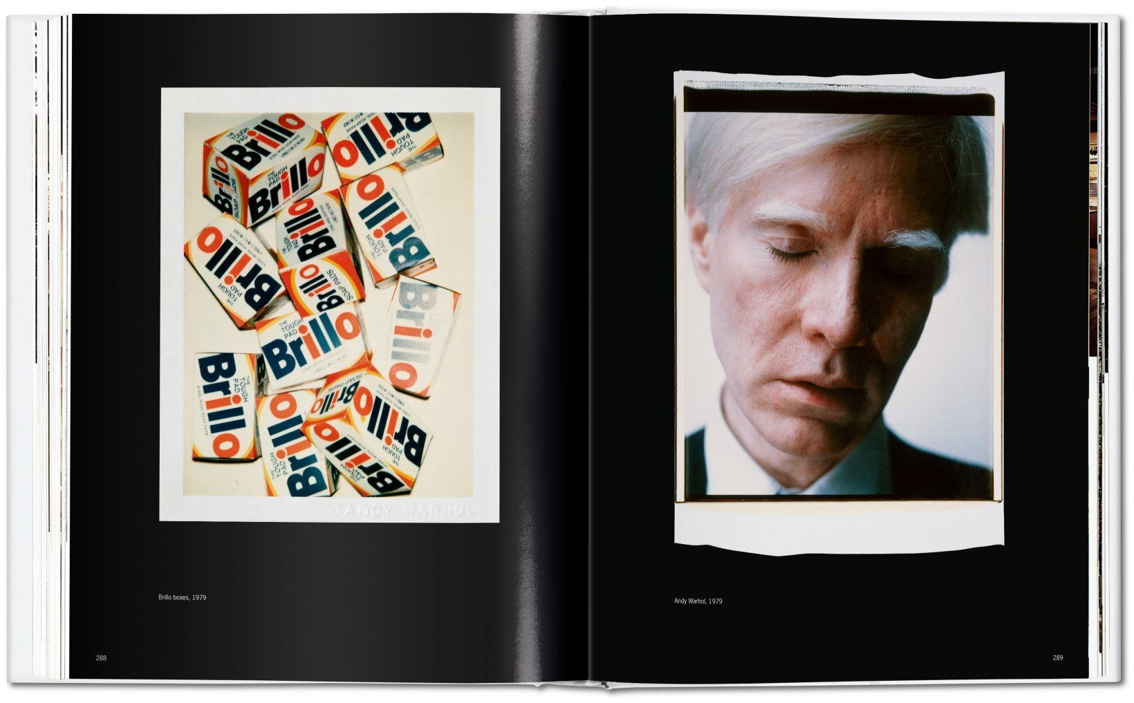 andy warhol gay literature