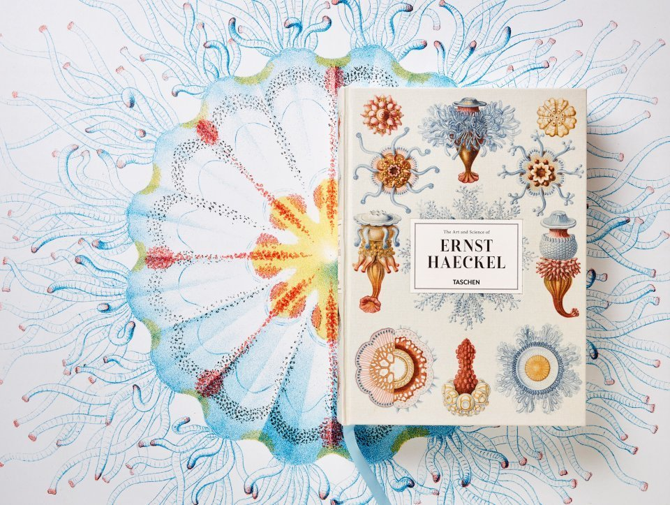 The Art and Science of Ernst Haeckel - image 1