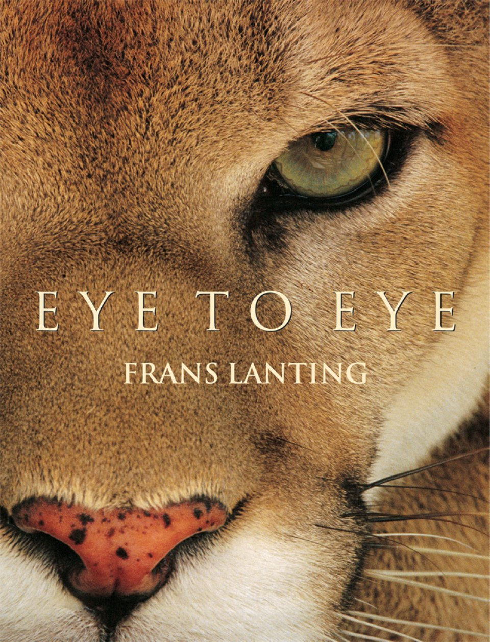 Frans Lanting. Eye to Eye. Limited gilt-edged Art Edition of 1,500 copies, each with the signed cibachrome print Cougar Face, Belize, by TASCHEN Books.